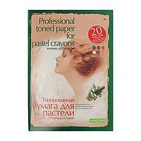 Папка для пастели А4, 20 листов 'Профессиональная серия', блок 6 цветов, 150-230 г/м2