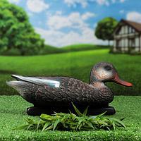 Фигура подсадная 'Кряква черная' утка