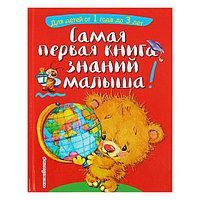 Самая первая книга знаний малыша для детей от 1 года до 3 лет. Буланова С. А., Мазаник Т. М.