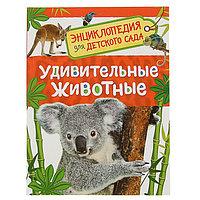 Энциклопедия для детского сада 'Удивительные животные'