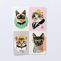 Обложка для паспорта 'Замурчательные котики' (комплект из 5 шт.)