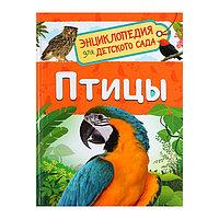 Энциклопедия для детского сада 'Птицы', Гальцева С. Н.