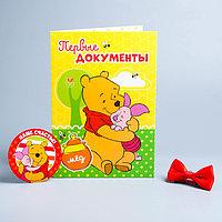 Обложка для документов 'Для нашего чуда' + наклейки, бабочка, Медвежонок Винни и его друзья (новый формат
