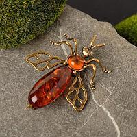 Брошь 'Янтарь' муха, цвет коньячный в бронзе