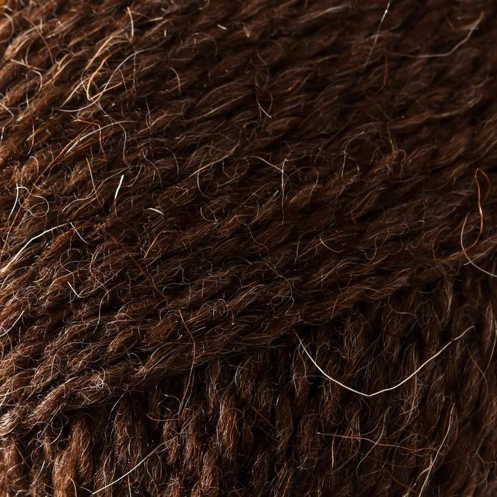 Пряжа Grannys sock W (Бабушкин носок ЧШ) 100 шерсть 250м/100гр м.т.корич (4606) (комплект из 2 шт.) - фото 3