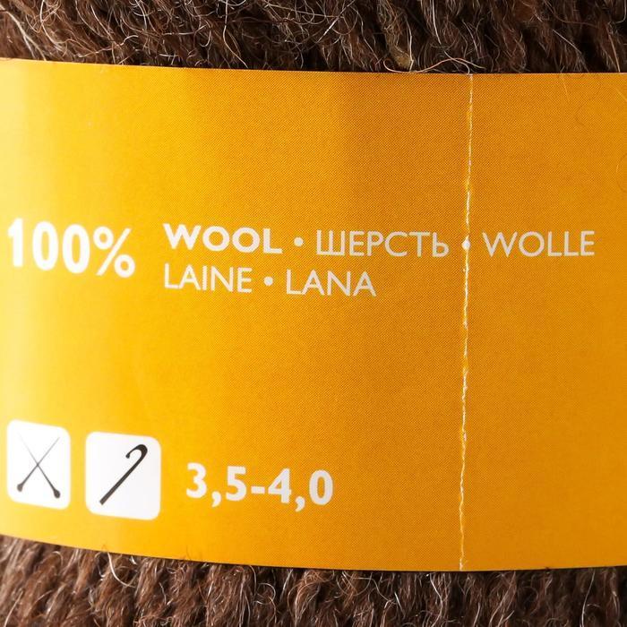 Пряжа Grannys sock W (Бабушкин носок ЧШ) 100 шерсть 250м/100гр м.т.корич (4606) (комплект из 2 шт.) - фото 4