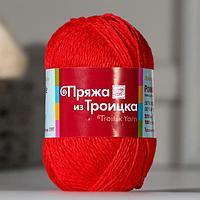 Пряжа 'Ромашка' 50 хлопок, 50 вискоза 210м/100гр (5069 мулине (красный))