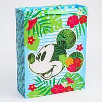 Пакет ламинат вертикальный 'Mickey', Микки Маус, 31х40х11 см