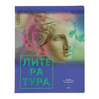 Тетрадь предметная 'Твоя мечта', 48 листов в линейку 'Литература', обложка мелованный картон, матовая
