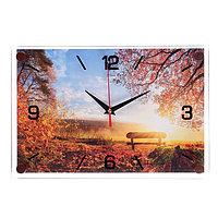 Часы настенные, серия Природа, 'Солнечный день', 20х30 см