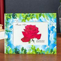 Фоторамка стекло 10х15 см 'Голуби и листья' двойной выпуклый рисунок 22х17 см