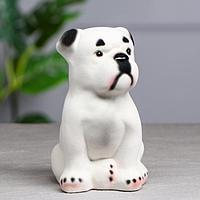 Копилка 'Собака Бульдог', флок, белый, 17 см