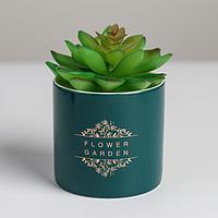 Керамическое кашпо с тиснением 'Цветочный сад', 8 х 7,5 см
