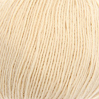 Пряжа 'Детский каприз' 50мериносовая шерсть, 50 фибра 225м/50гр (442-Натуральный) (комплект из 5 шт.)