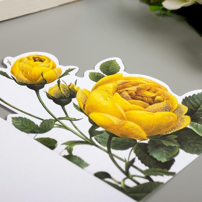 Поздравительная открытка и конверт American Crafts 'Rose Birthday' - фото 6