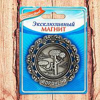 Тарелка-магнит 'Воронеж'