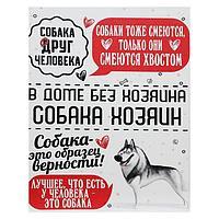 Картина на холсте 'Собака - хозяин. Хаски' 38х48 см