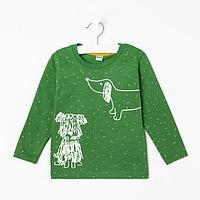 Лонгслив для мальчика, цвет зелёный, рост 80 см
