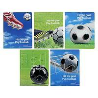 Тетрадь 48 листов клетка 'Футбол-моя игра', картонная обложка, лак, 5 видов МИКС (комплект из 10 шт.)