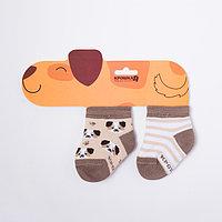 Набор носков Крошка Я 'Пёсик', 2 пары, 6-8 см