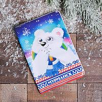 Обложка на паспорт 'Мурманск. Мишка'
