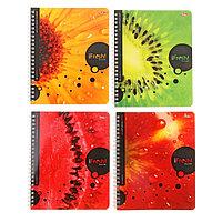 Тетрадь 80 листов клетка на гребне iFRESH, картонная обложка, 4 вида МИКС (комплект из 4 шт.)