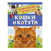 Энциклопедия для детского сада 'Кошки и котята'