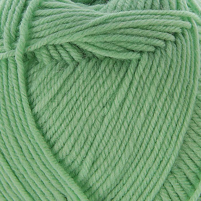 Пряжа 'Элегантная' 100 мериносовая шерсть 250м/100гр (86-Анис) - фото 1
