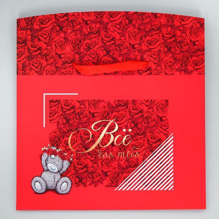 Пакет-коробка 'Всё для тебя', Me To You, 20 x 28 x 13 см - фото 2