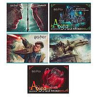 Альбом для рисования А4, 20 листов на скрепке 'Гарри Поттер', обложка мелованный картон, МИКС (комплект из 2
