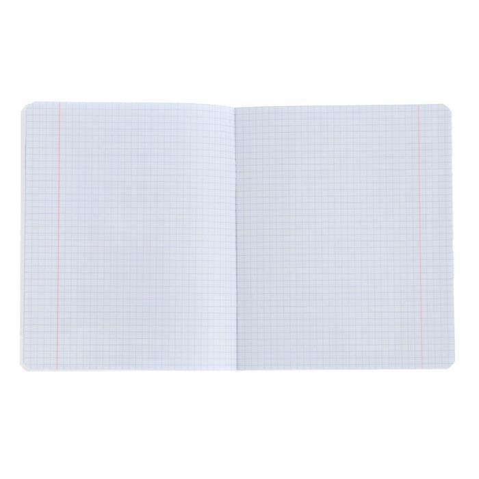 Тетрадь 24 листа в клетку 'Кот Басик', обложка мелованный картон, блок офсет, МИКС (комплект из 10 шт.) - фото 3