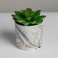 Керамическое кашпо с тиснением 'Любовь', 8 х 7,5 см