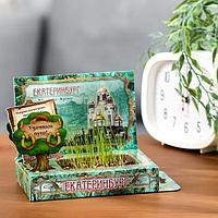 Растущая травка в открытке 'Екатеринбург'