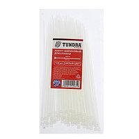 Хомут нейлоновый TUNDRA krep для стяжки, 2.5 х 150 мм, белый, в упаковке 100 шт.
