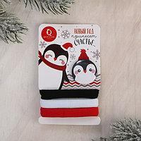 Новогодний набор резинки и значок 'Новый год принесет счастье', 9 х 6 см