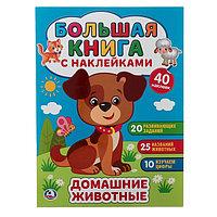 Большая книга с наклейками 'Домашние животные', 240 х 330 мм