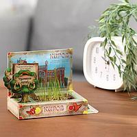 Растущая травка в открытке 'Киров'