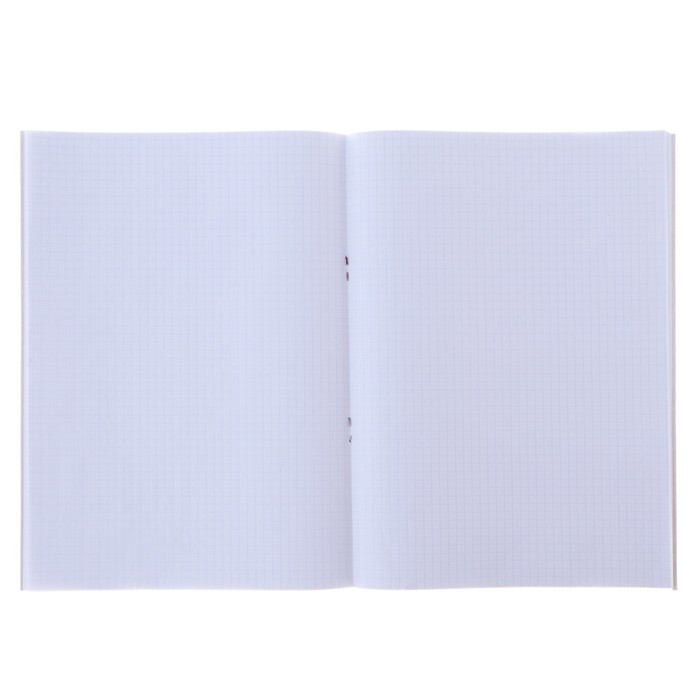 Тетрадь А4, 96 листов в клетку 'Фламинго', обложка мелованный картон, блок офсет (комплект из 2 шт.) - фото 2