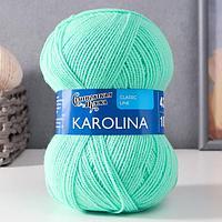 Пряжа Karolina (Каролина) 100 акрил 438м/100гр весна NEW (10899) (комплект из 3 шт.)
