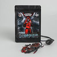 Прыгающие животные Power scorpion, скорпион