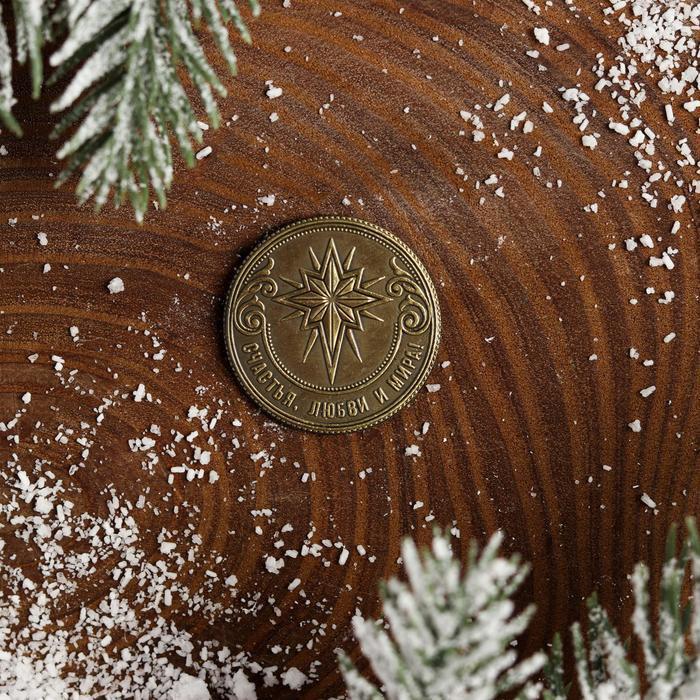 Рождественская монета-талисман 'Снегирь' - фото 3