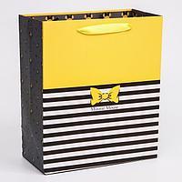 Пакет ламинат вертикальный 'Минни', Минни Маус, 23х27х11,5 см