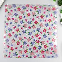 Ацетатный лист Pink Paislee 'Bloom Street'