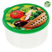 Ланч-бокс 'Овощи и зелень', 0.5 л