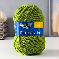 Пряжа Karapuz Eco (КарапузЭко) 90 акрил, 10 капрон 125м/50гр аспарагус (323)
