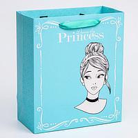 Пакет ламинат вертикальный 'Princess', Принцессы, 23х27х11,5 см