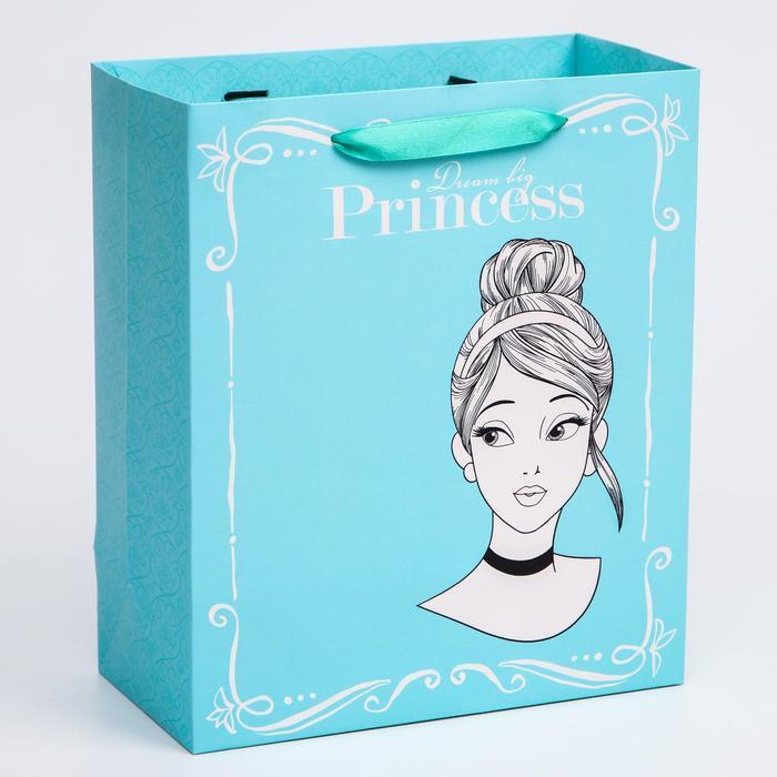 Пакет ламинат вертикальный 'Princess', Принцессы, 23х27х11,5 см - фото 1