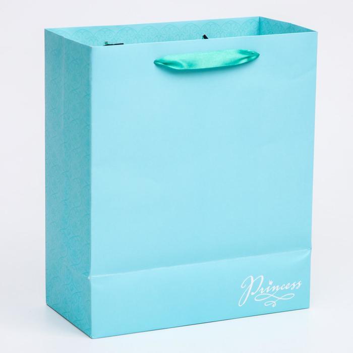 Пакет ламинат вертикальный 'Princess', Принцессы, 23х27х11,5 см - фото 2