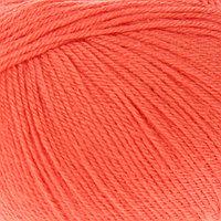 Пряжа 'Baby Wool' 20 кашемир, 40 меринос. шерсть, 40 акрил 175м/50гр (819 оранжевый)