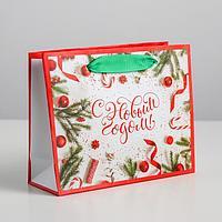 Пакет ламинированный горизонтальный 'Атрибуты праздника', S 15 x 12 x 5.5 см (комплект из 12 шт.)